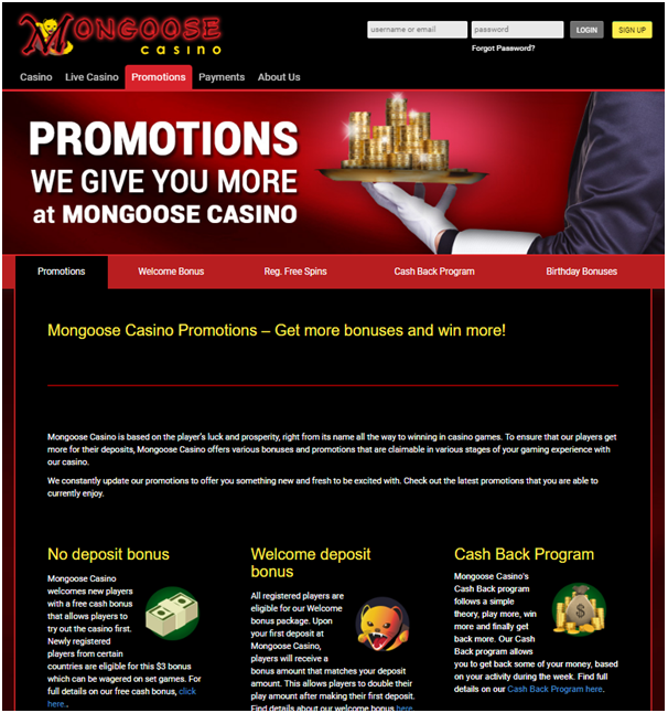 Mongoose casino bonus offers